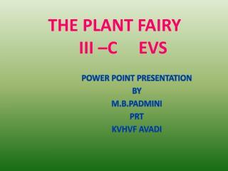 THE PLANT FAIRY     III –C     EVS
