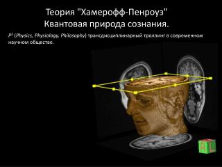 """Теория  """" Хамерофф-Пенроуз """" Квантовая природа сознания ."""