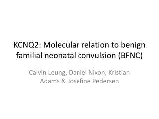 KCNQ2 : Molecular relation to benign familial neonatal convulsion (BFNC)