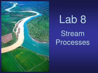 Lab 8