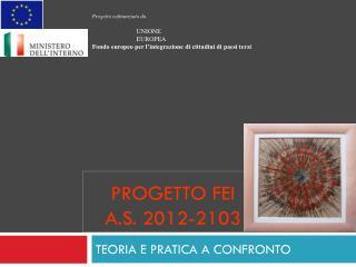 PROGETTO FEI A.S. 2012-2103