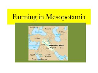 Farming in Mesopotamia