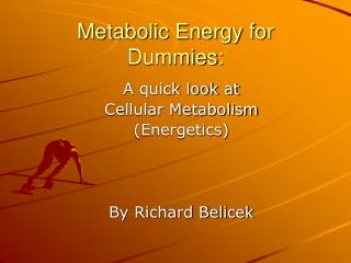 Metabolic Energy for Dummies: