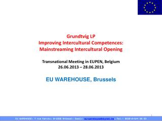 Grundtvig LP Improving Intercultural Competences:   Mainstreaming Intercultural Opening