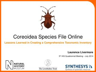 Coreoidea  Species File Online