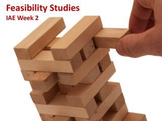 Feasibility  Studies IAE Week 2
