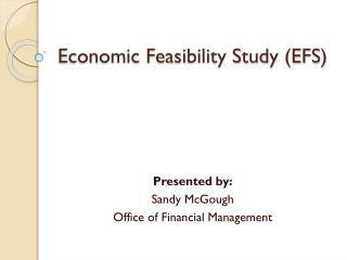 Economic Feasibility Study (EFS)