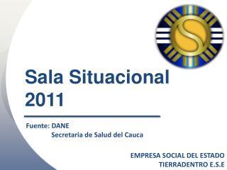 Sala Situacional  2011