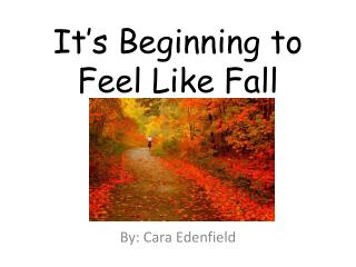 It's Beginning to Feel Like Fall