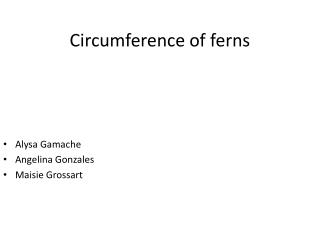 Circumference of ferns