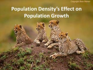 Population Density's Effect on Population Growth