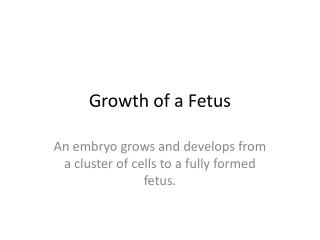 Growth of a Fetus