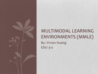 Multimodal Learning Environments ( mmle )