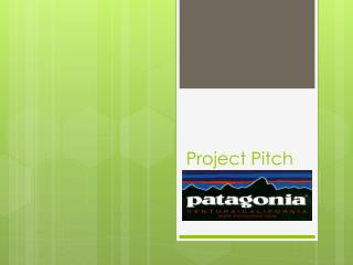 Project Pitch