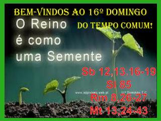 BEM-VINDOS  AO 16º  DOMINGO                                DO  TEMPO COMUM!