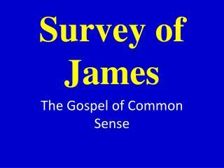 Survey of James