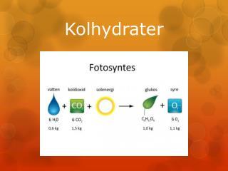 Kolhydrater