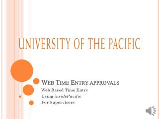 Web Time Entry approvals