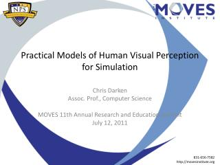 Practical Models of Human Visual Perception for Simulation