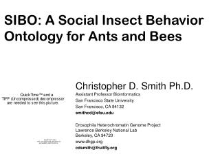 SIBO: A Social Insect Behavior Ontology for Ants and Bees