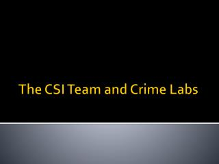 The CSI Team and Crime Labs