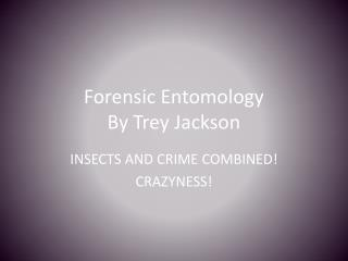 Forensic Entomology  By Trey Jackson
