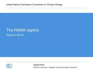 The NAMA registry Report to SBI 40