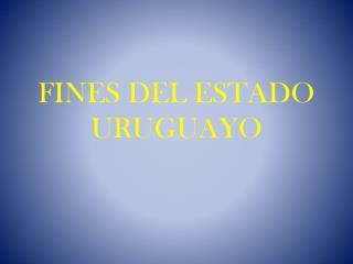 FINES DEL ESTADO URUGUAYO