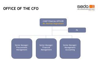 Senior Manager: Financial Management