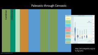 Paleozoic through Cenozoic
