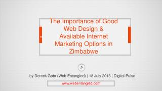 The Importance of Good Web Design & Available Internet Marketing Options in Zimbabwe