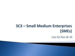 SC3 – Small Medium Enterprises (SMEs)