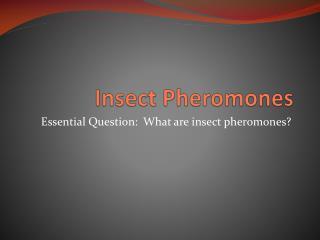 Insect Pheromones
