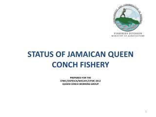 STATUS OF JAMAICAN QUEEN CONCH FISHERY