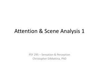 Attention & Scene Analysis 1