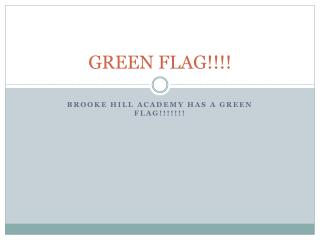 GREEN FLAG!!!!