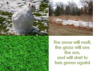 The  snow will melt , the  grass will see  the  sun ,  and  will start  to  turn  green  again !