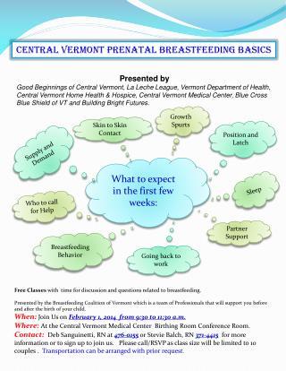 Central Vermont prenatal breastfeeding basics