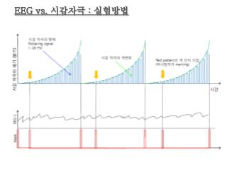 EEG vs.  시감자극  :  실험방법