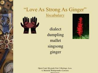 Love As Strong As Ginger  Vocabulary
