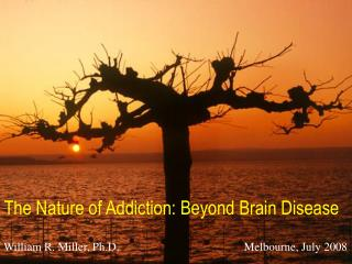 The Nature of Addiction: Beyond Brain Disease