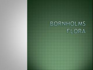 Bornholms flora