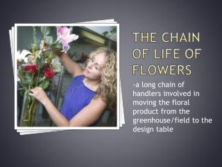 The chain of life of flowers