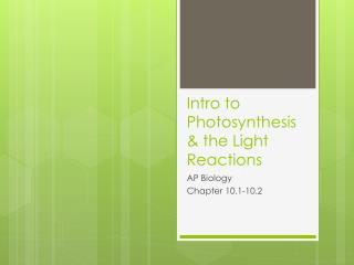 Intro to Photosynthesis & the Light Reactions