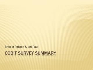 CobiT  Survey Summary