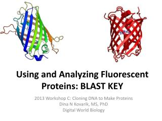 Using and Analyzing Fluorescent  Proteins: BLAST KEY