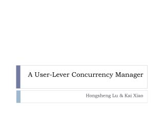 A User-Lever Concurrency Manager