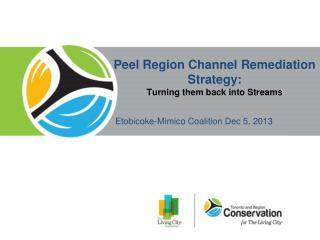 Peel Region Channel Remediation Strategy: T urning them back into Streams