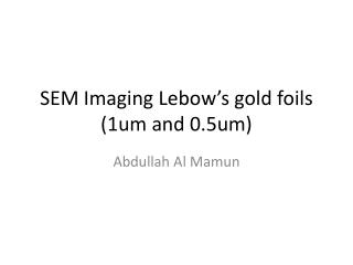 SEM Imaging  Lebow's  gold foils (1um and 0.5um)