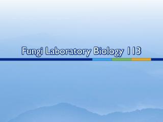 Fungi Laboratory Biology 113